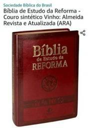Promoção, Bíblia de estudo da Reforma, Nova, na caixa e lacrada.