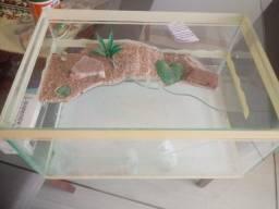 Aquario pequeno com aquecedor para tartaruga