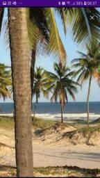 Área medindo 530 ta = 2.308,680 m 2 = 230.86 ha no povoado Coqueiros