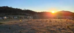 Fazenda em Urupema - ideal para construir hotel fazenda