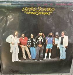 Lynyrd Snynyrd Lp vinil, bom estado capa e disco.