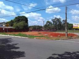 LOTE - Jardim Tropical - Avenida da Luz