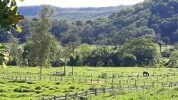 Arrendamento fazenda em Cáceres