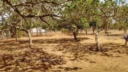 Vendo Chácara em Garanhuns