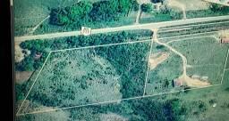 Área de 01 hectare