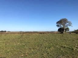 Procuro 2 áreas de terra para agricultura e pecuária (leia)