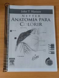 Netter - Anatomia para colorir