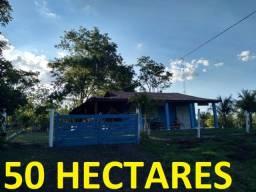 Linda Chácara Montada Rochedinho Saída pela UCDB. com 50 Hectares