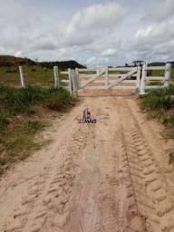 Fazenda à venda, por R$ 10.000.000 - Zona Rural - Pimenta Bueno/RO