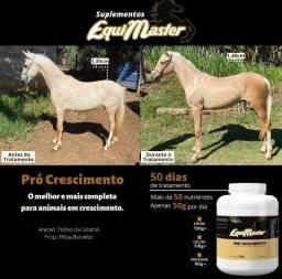 Equimaster