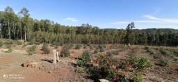 Título do anúncio: Área de terra em Chapecó linha Alto da Serra