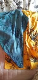 2 camisas hizzon