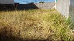 """Lote residencial ou comercial 344m2 IPTU 16""""frente rua 12 Vicente Pires plano murado"""