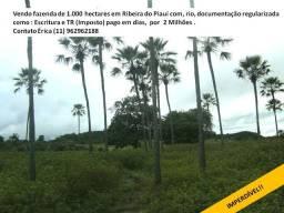 Linda fazenda para plantação,ou energia solar em Ribeira do Piauí