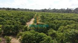 Sítio à venda por R$ 460.000 - 16km de Porto Seguro - Porto Seguro/Bahia