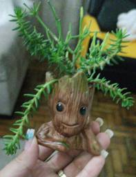 Vaso do Groot decorado com planta