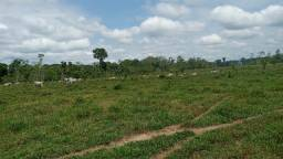 Título do anúncio: Fazenda às margens do Rio Envira