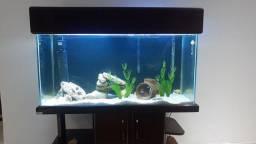 Título do anúncio: Vendo aquário 200litros
