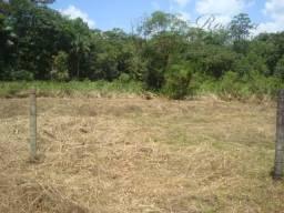 Lindo terreno medindo 1.290,00 m² localizado na colônia Marques