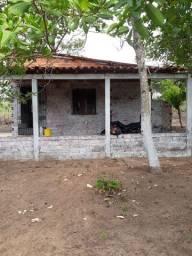Vendo no sítio no bairro Cajupari zona rural de São Luís