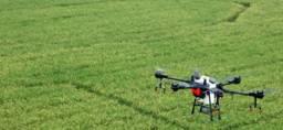 Serviço Pulverização Drone