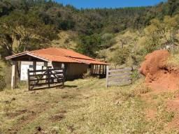 Fazenda 80 Alqueires Sendo 20 Alqueires Mata APP, Casa Sede(Em Reforma) e Caseiro Agua Nas
