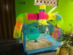 Ramister com gaiola