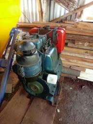 Vendo motor agrale M790