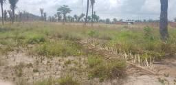 Vende terreno em peritoro