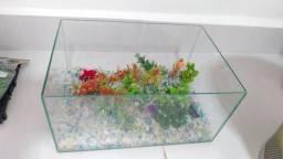 Kit aquario bomba aquecedor pacote completo aproveite