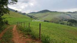 Fazenda em Simão Pereira MG 250 hectares