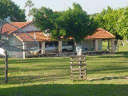 300 Alq Pta. - Pecuária - Montada - 02 Rios Grandes - Inocência - MS
