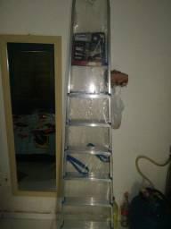 Escada de alumínio nunca usada de 7 degraus  ZAP *