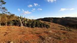 Título do anúncio: Terreno de Café - 4,70 hectares - 1 alqueire - 6.000 pés de Café 100% Arábica Catuai