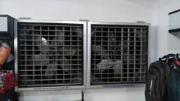 Climatizador de parede ECO 500 dupla semi novo