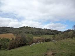 R-181 Barbada Vendo Sítio de 28 hectares na Colônia Santa Áurea/Pelotas
