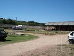 Terreno para alugar em Restinga, Porto alegre cod:LU271171