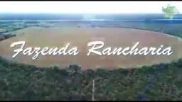 Vendo Fazenda de 490 ha em Matias Cardoso, MG