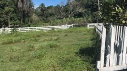 Belíssima Fazenda de 144 hectares Rio Verde RS