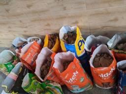 Doação - 15 sacos de entulho