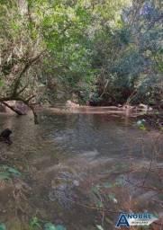 Sítio de 2 hectares á Venda, 20min de Cascavel/PR