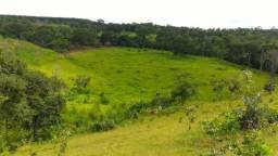 Sítio 10 Alqueires a 1 Km da BR e 7 Km de Pirenópolis Goiás