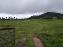 Fazenda 189 hectare, especial para gado, açudes, casa funcionário, maquiné