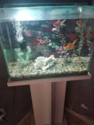 Vendo aquário de 50 litros