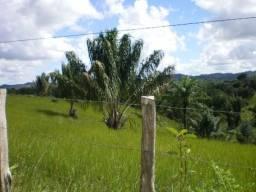 Fazenda a venda em jaguaripe-ba