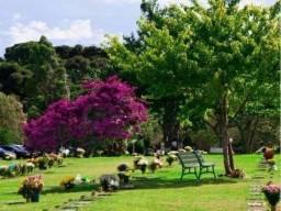 Jázigo Cemitério Parque Iguaçu - 3 gavetas - novo -nunca usado - motivo de mudança