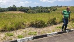 terreno fazenda real