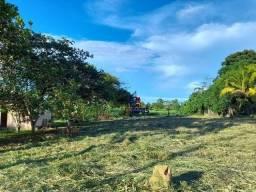 Chácara à venda, por R$ 80.000 - Zona Rural - Ji-Paraná/RO