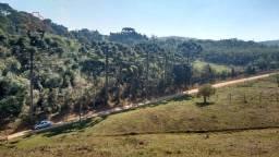 Terreno à venda, 10000 m² por R$ 245.000,00 - Pacotuba - Almirante Tamandaré/PR