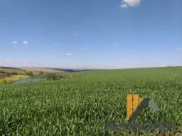Rural fazenda com 3 quartos - Bairro Centro em Tamarana